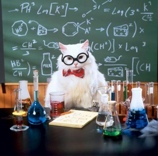 Hello! This page will be dedicated to posting cool Math and Science Links!